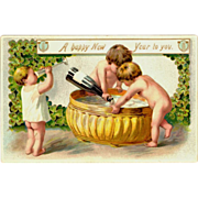 Raphael Tuck Embossed Happy New Year Postcard Series No.113