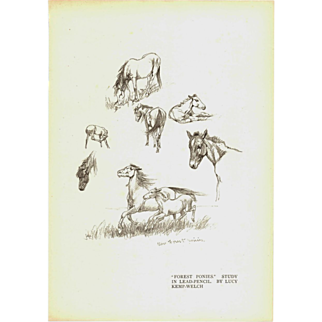 "Lucy Kemp-Welch 'Forest Ponies' study in lead Pencil Print 1895.  11"" x 7. 3/4"""