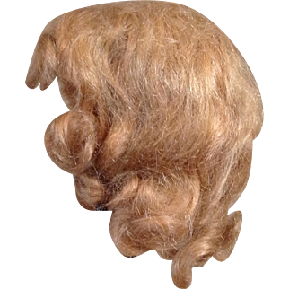 Lovely Mohair Wig from a Composition Mary Hoyer Doll