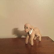 Smallest Steiff Lamby
