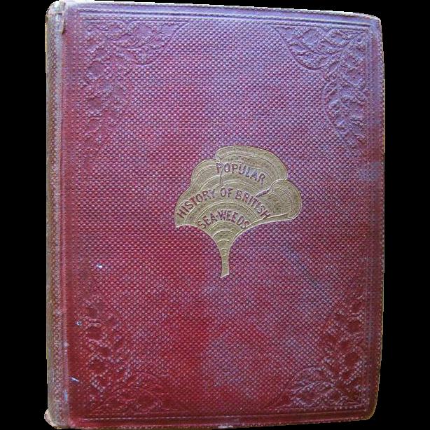 Popular History of British Seaweeds, 1857