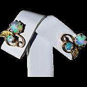 Pretty Pair of 14K Natural Opal Post Pierced Earrings