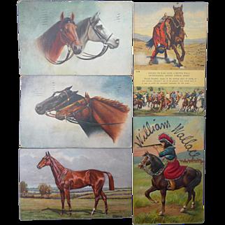 Five Vintage Horse Themed Postcards