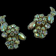Beautiful Flower Sherman Earrings