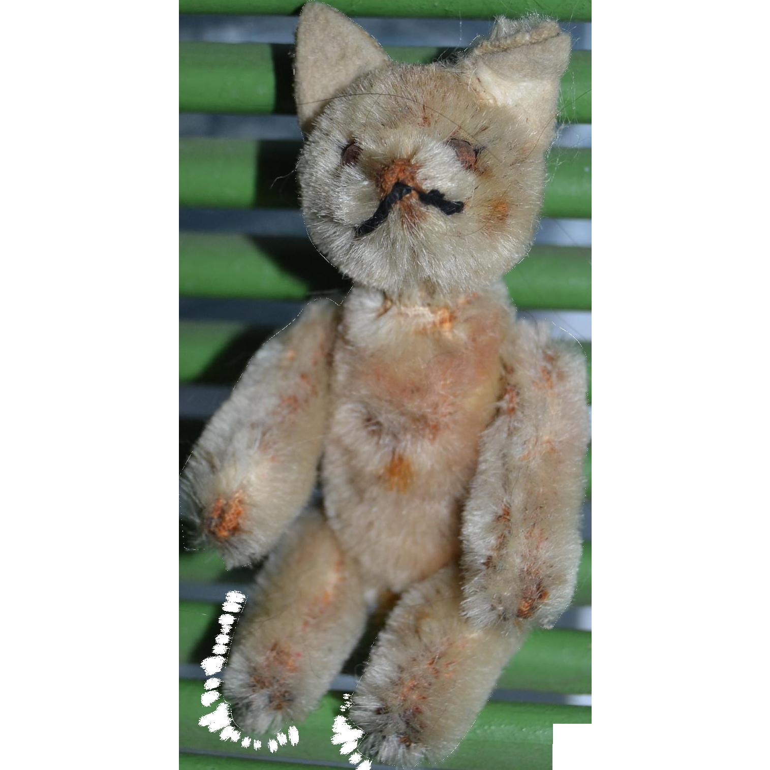 Schuco tiny cat