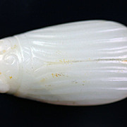 Superb Chinese white Nephrite jade of Cicada or beetle!