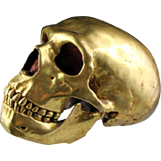 Rare life-size Sino-Tibetan gilt bronze model of a Skull!