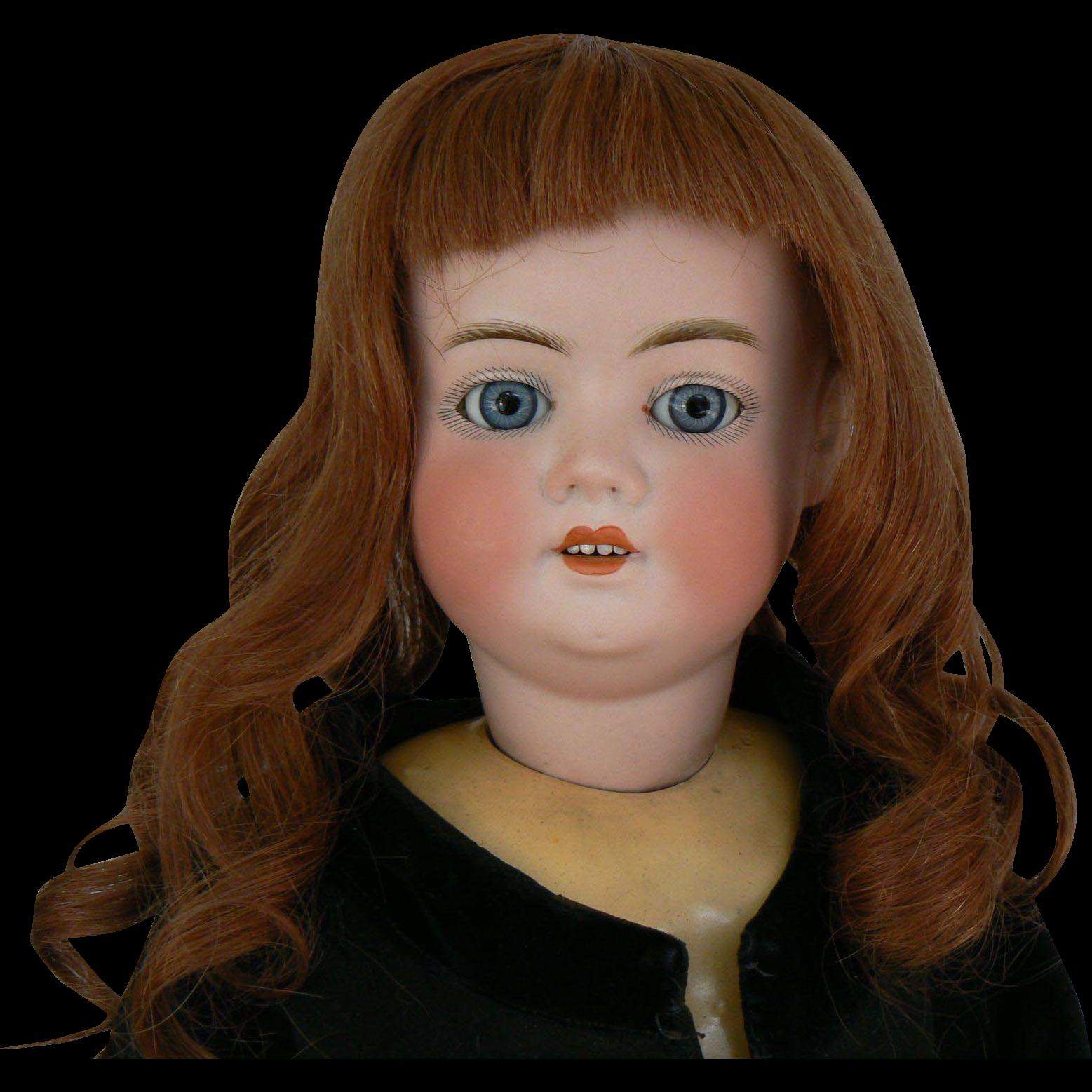 Schoenau  Hoffmeister VIOLA # 5500 doll Great body and very sweet.