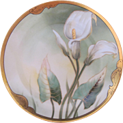 Art Nouveau Pickard Rare Calla Lily Plate Curtis Marker Rare Limoges Blank