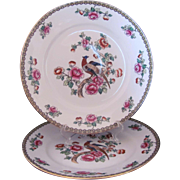 """PHEASANT 2 Dinner Plates 10"""" F. Winkle & Co. Whieldon Ware Antique c.1908"""