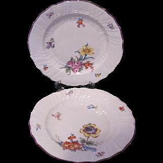 Dresden Carl Thieme Two Plates 7.5 Inches c.1901
