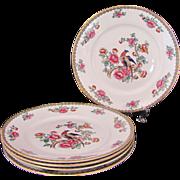 "PHEASANT 4 Plates Salad Dessert 8"" F. Winkle & Co. Whieldon Ware Antique c.1908"