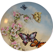 Antique Limoges Butterfly Plate Hand Painted