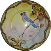 Nippon Bowl Blue Jay Hand Painted