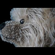 Artist Made Mohair Bear Limited Edition Award Winning Robin Rive