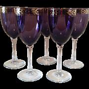 5 ~ Amethyst Magnum Wine Glasses