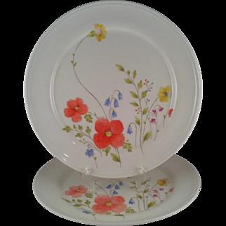 2 Mikasa Just Flowers Dinner Plates