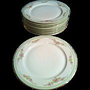 8 Dinner Plates PT Bavaria Tirschenreuth - the Montrose #4485-