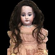 Antique Dark brown wig.