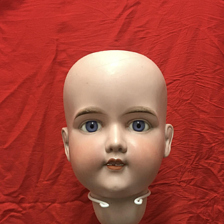 Very large Antique Bisque AM head A 20 M
