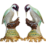 French Porcelain Pair of Woodpeckers Left & Right Side Bronze Ormolu Base late 19th century (circa 1880s)
