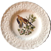Outstanding Set of Eight Audubon Bird Dinner Plates