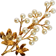 Akoya salt water pearl broach