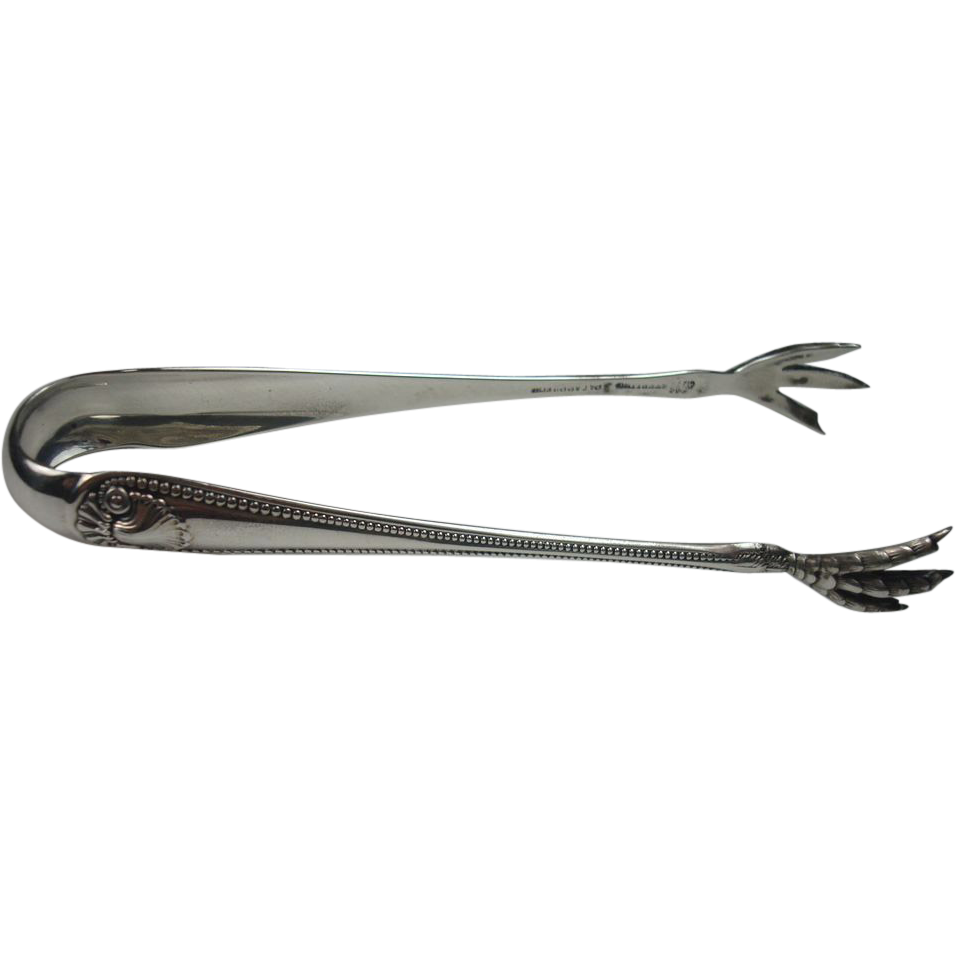 Whiting 1880 Bead and Clamshell Sterling Sugar Tongs