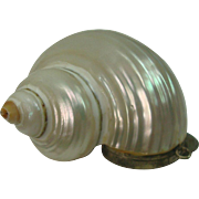 Interesting Snail Pill Box