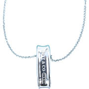 Tiffany & Co 1837 Sterling Silver Loop Ring Pendant and Chain Necklace - Oblong Sterling Pendant with Tiffany and Co Chain