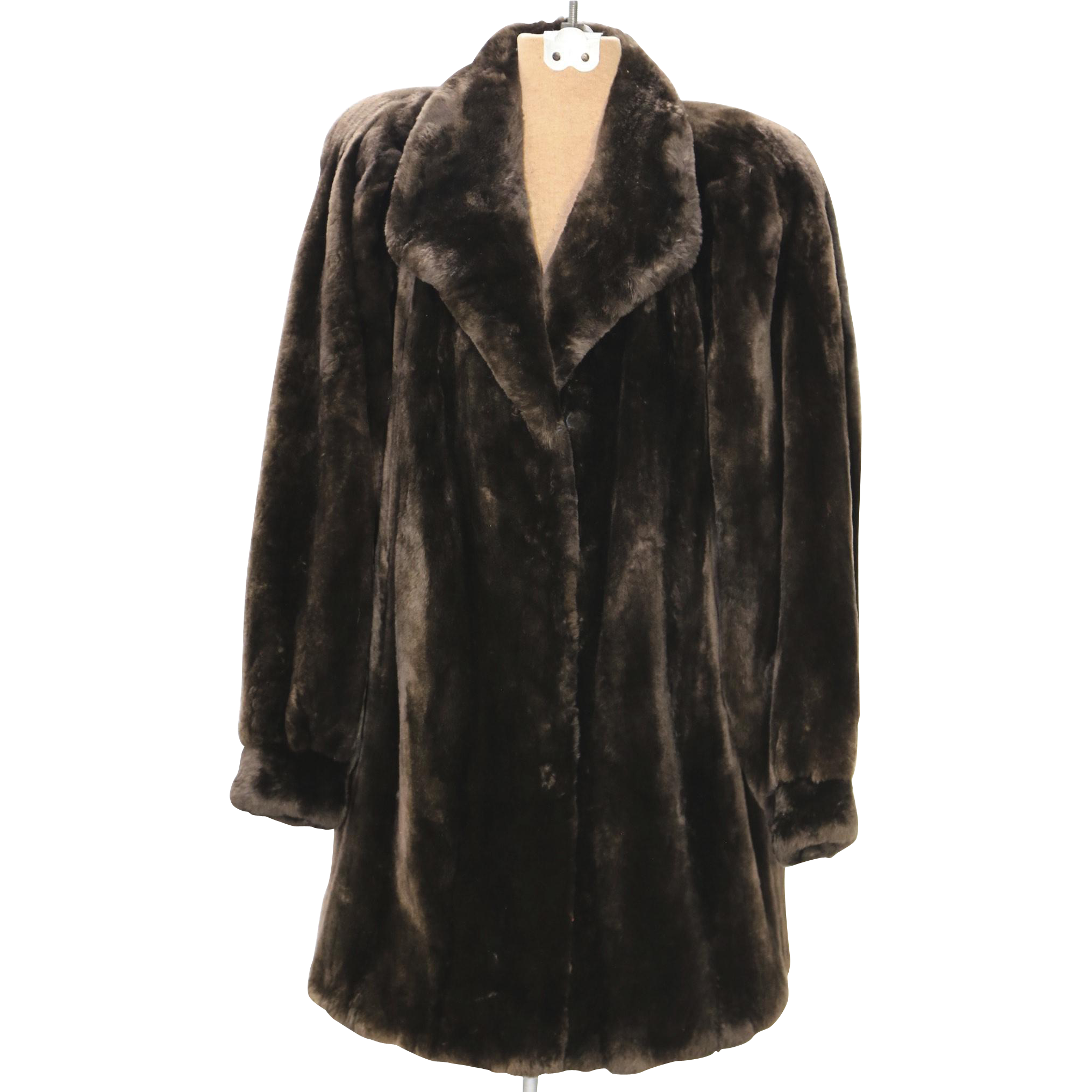Vintage Beaver Fur 33