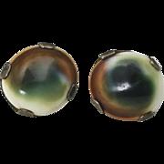 Vintage Sterling Silver Green Cats Eye Operculum Shell Screw Back Earrings