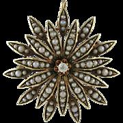 Victorian 14K Gold Cultured Seed Pearl Diamond Starburst Pin Pendant