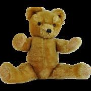 "Vintage English Teddy Bear Golden Fur  Glass Eyes Hand Stitiched   18"" Growler"