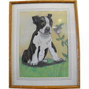 Boston Terrier Pastel Painting Signed Dated 1949