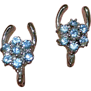 Horseshoe Blue Rhinestone Earrings