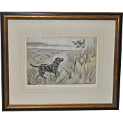 Henry Wilkinson (English, 1921-2011) Sporting Dog Etching w/ Aquatint