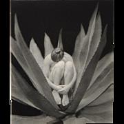 Kim Weston Black and White Photograph c.2001