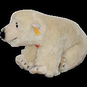 Vintage Steiff Polar Bear