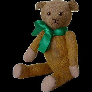 Sweet 10 Inch 1920s Bear