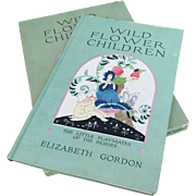 Wild Flower Children Elizabeth Gordon author Janet Laura Scott Illustrator Pub 1918 Rare Beautifully Illustrated Book in Original Box