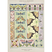 Art Nouveau Butterfly & Insect Lithograph
