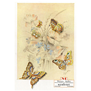 Original French Vintage Advertising  Print for Mauboussin Butterfly Jewelry - Red Tag Sale Item
