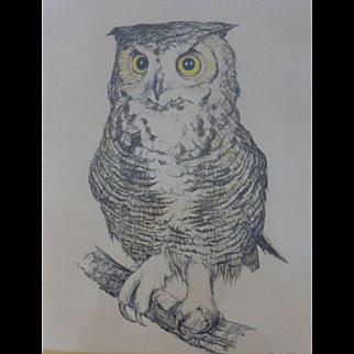 Texas Artist Art Texana Painting David Sanders Owl Pastel Signed Original Frame