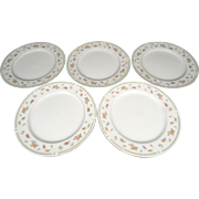 5 x Abingdon Fine Porcelain China Dinner Plates Circa 1970s
