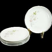 Royal M By Mita Shoten Sierra Pattern Salad Plates Set Of 6