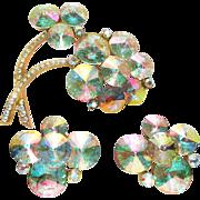 BOOK WEISS AB Rivoli Brooch Earrings Set