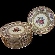 "12 Schumann Bavaria Dresden 18557 Dinner Plates, 11""Diameter"