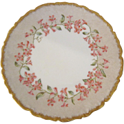 T&V Tressemann & Vogt Limoges Hand Painted Mayflowers Plate