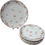 Late 19th C. J.P. Jean Pouyat Limoges Hand Painted Rose Decorated Salad or Sandwich Set